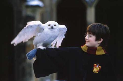 Harry Potter och de vises sten. Warner Bros 2001