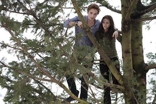 Twilight. Nordisk Film 2008